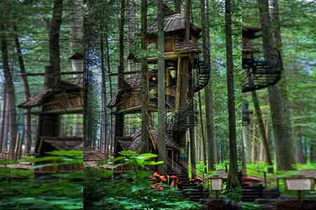 Three-story - treehouse